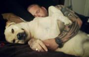 snuggling dog